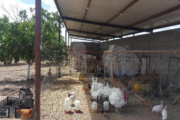 Foto de terreno comercial en venta en prof. leticia palma , ocampo o torreón, chihuahua, chihuahua, 5713273 No. 16