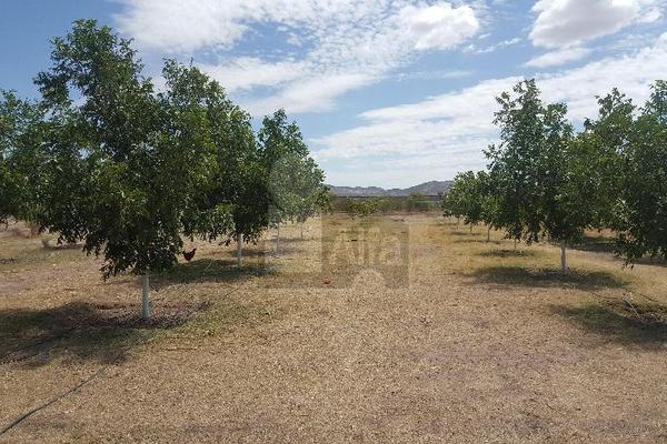 Foto de terreno comercial en venta en prof. leticia palma , ocampo o torreón, chihuahua, chihuahua, 5713273 No. 17