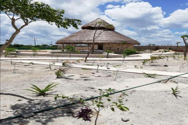 Foto de terreno comercial en venta en  , progreso de castro centro, progreso, yucatán, 0 No. 03