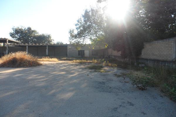 Foto de terreno comercial en venta en progreso , santa cruz xoxocotlan, santa cruz xoxocotlán, oaxaca, 7206401 No. 08