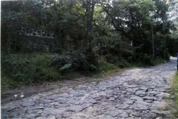 Foto de terreno habitacional en venta en prolongación 5 de febrero 221, santiago tepalcatlalpan, xochimilco, df / cdmx, 9914437 No. 07