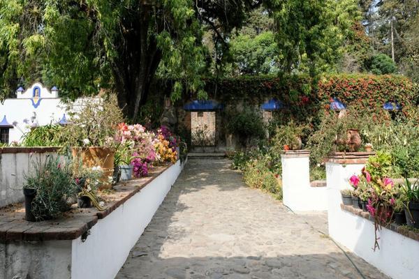 Foto de rancho en venta en prolongación morelos , san juan tehuixtitlán centro, atlautla, méxico, 19342688 No. 08