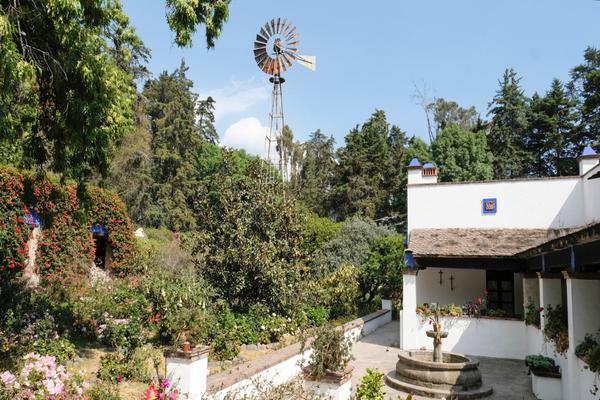 Foto de rancho en venta en prolongación morelos , san juan tehuixtitlán centro, atlautla, méxico, 19342688 No. 12