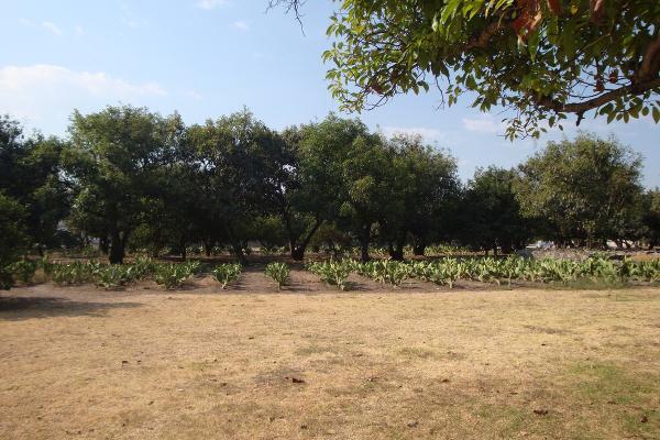 Foto de terreno habitacional en renta en prolongacion niños heroes , san agustin, tlajomulco de zúñiga, jalisco, 14376314 No. 05