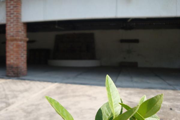 Foto de terreno habitacional en renta en prolongacion niños heroes , san agustin, tlajomulco de zúñiga, jalisco, 14376314 No. 13