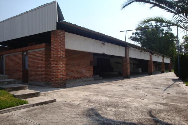 Foto de terreno habitacional en renta en prolongacion niños heroes , san agustin, tlajomulco de zúñiga, jalisco, 14376314 No. 16