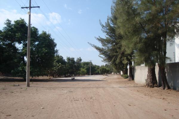 Foto de terreno habitacional en renta en prolongacion niños heroes , san agustin, tlajomulco de zúñiga, jalisco, 14376314 No. 25