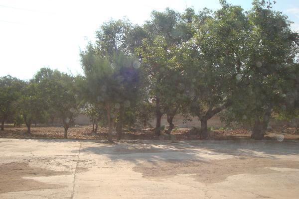 Foto de terreno habitacional en renta en prolongacion niños heroes , san agustin, tlajomulco de zúñiga, jalisco, 14376314 No. 29