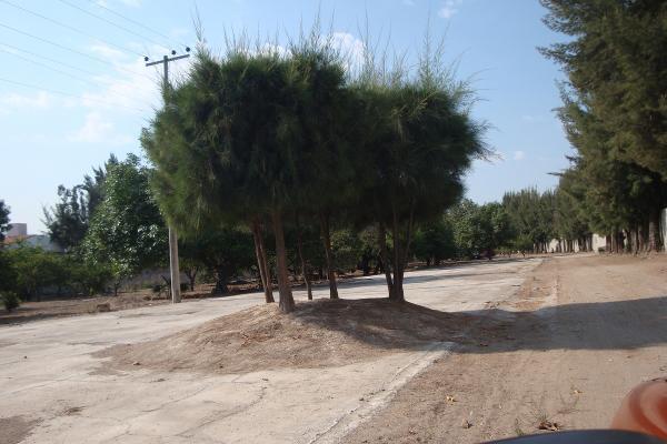 Foto de terreno habitacional en renta en prolongacion niños heroes , san agustin, tlajomulco de zúñiga, jalisco, 14376314 No. 30