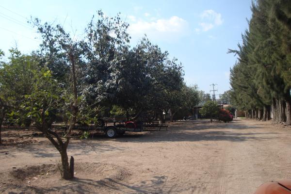 Foto de terreno habitacional en renta en prolongacion niños heroes , san agustin, tlajomulco de zúñiga, jalisco, 14376314 No. 33