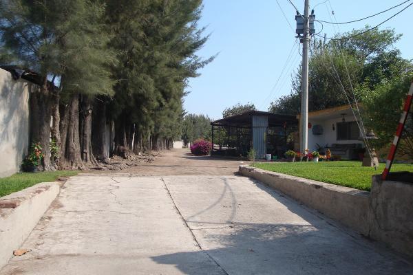 Foto de terreno habitacional en renta en prolongacion niños heroes , san agustin, tlajomulco de zúñiga, jalisco, 14376314 No. 42