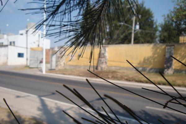 Foto de terreno habitacional en renta en prolongacion niños heroes , san agustin, tlajomulco de zúñiga, jalisco, 14376314 No. 45