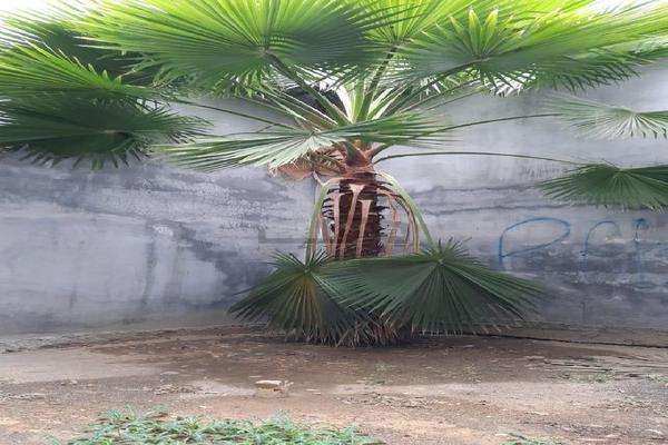 Foto de casa en venta en puebla , 15 de mayo, guadalupe, nuevo león, 0 No. 10
