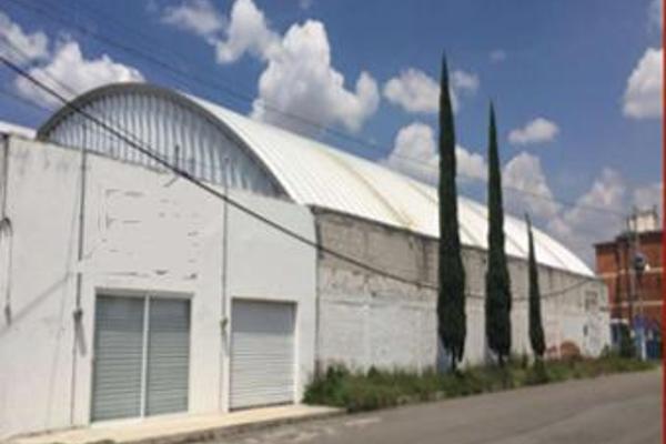 Foto de nave industrial en renta en  , puebla, puebla, puebla, 12266837 No. 04