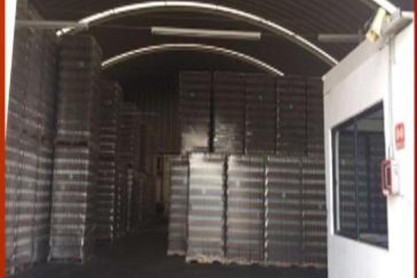 Foto de nave industrial en renta en  , puebla, puebla, puebla, 12266837 No. 06