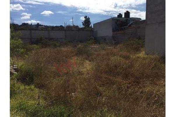 Foto de terreno habitacional en venta en  , puebla, puebla, puebla, 8858340 No. 04