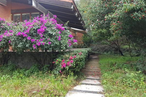 Foto de terreno habitacional en venta en  , pueblo de san pablo tepetlapa, coyoacán, df / cdmx, 8318423 No. 07