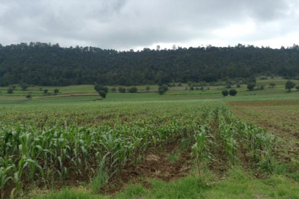 Foto de terreno habitacional en venta en pueblo nuevo , amanalco de becerra, amanalco, méxico, 5723775 No. 02