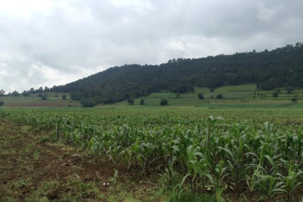 Foto de terreno habitacional en venta en pueblo nuevo , amanalco de becerra, amanalco, méxico, 5723775 No. 04