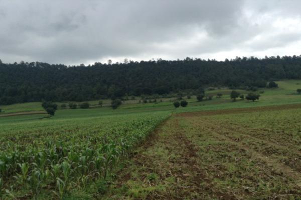 Foto de terreno habitacional en venta en pueblo nuevo , amanalco de becerra, amanalco, méxico, 5723775 No. 05