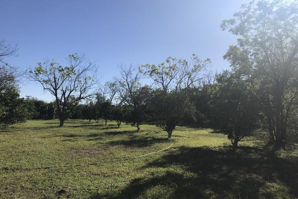 Foto de rancho en venta en  , pueblo nuevo, cadereyta jiménez, nuevo león, 5371347 No. 02