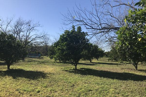 Foto de rancho en venta en  , pueblo nuevo, cadereyta jiménez, nuevo león, 5371347 No. 03