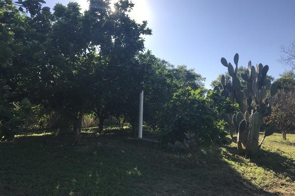 Foto de rancho en venta en  , pueblo nuevo, cadereyta jiménez, nuevo león, 5371347 No. 06