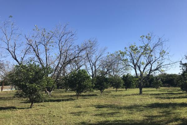 Foto de rancho en venta en  , pueblo nuevo, cadereyta jiménez, nuevo león, 5371347 No. 10