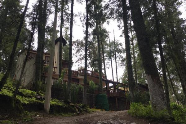 Foto de terreno habitacional en venta en  , pueblo nuevo, mineral del monte, hidalgo, 3419030 No. 02