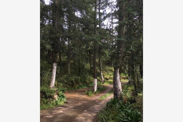 Foto de terreno habitacional en venta en  , pueblo nuevo, mineral del monte, hidalgo, 3419030 No. 04