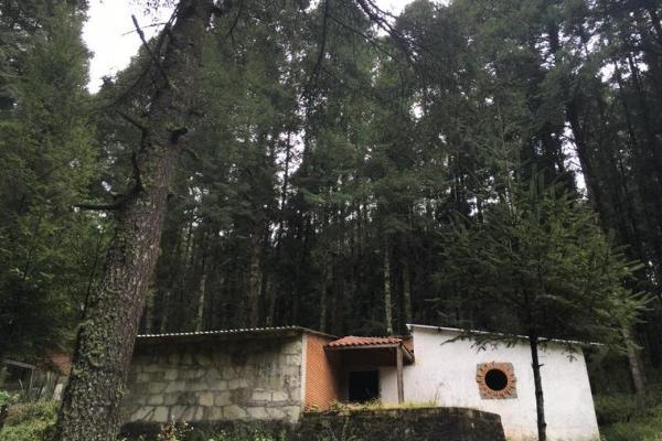 Foto de terreno habitacional en venta en  , pueblo nuevo, mineral del monte, hidalgo, 3419030 No. 07