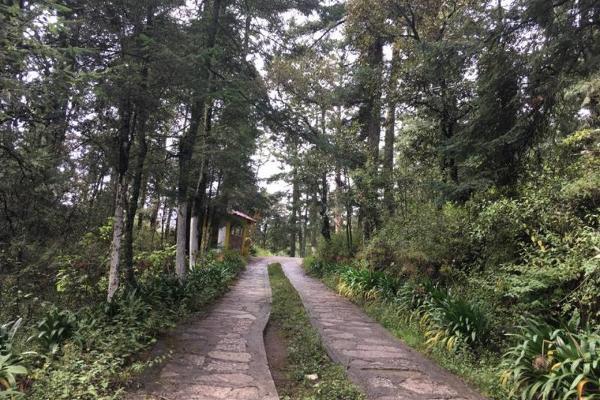 Foto de terreno habitacional en venta en  , pueblo nuevo, mineral del monte, hidalgo, 3419030 No. 09
