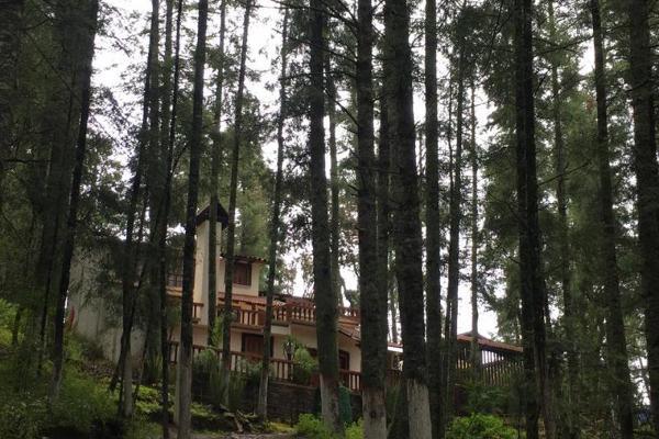 Foto de terreno habitacional en venta en  , pueblo nuevo, mineral del monte, hidalgo, 3419030 No. 13