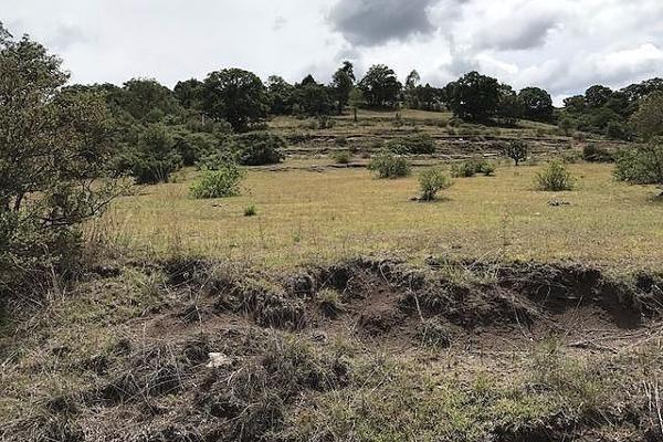 Foto de terreno habitacional en venta en pueblo san francisco magú , san francisco magu, nicolás romero, méxico, 5855362 No. 11