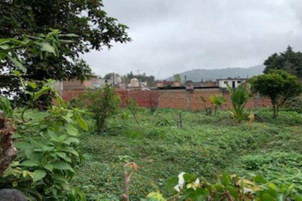 Foto de terreno habitacional en venta en puerto escondido , mariano escobedo, mariano escobedo, veracruz de ignacio de la llave, 14872925 No. 02