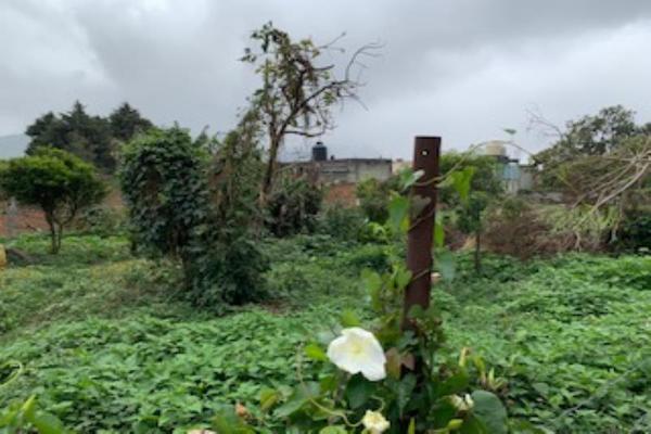 Foto de terreno habitacional en venta en puerto escondido , mariano escobedo, mariano escobedo, veracruz de ignacio de la llave, 14872925 No. 03