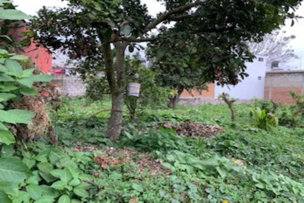 Foto de terreno habitacional en venta en puerto escondido , mariano escobedo, mariano escobedo, veracruz de ignacio de la llave, 14872925 No. 04