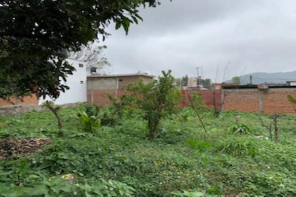 Foto de terreno habitacional en venta en puerto escondido , mariano escobedo, mariano escobedo, veracruz de ignacio de la llave, 14872925 No. 05