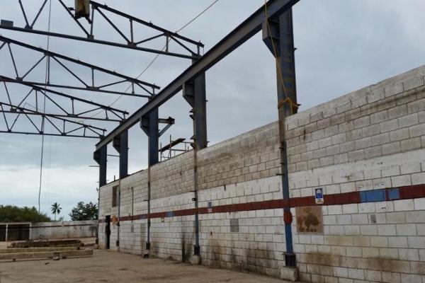 Foto de terreno habitacional en renta en  , puerto industrial de altamira, altamira, tamaulipas, 11925775 No. 04