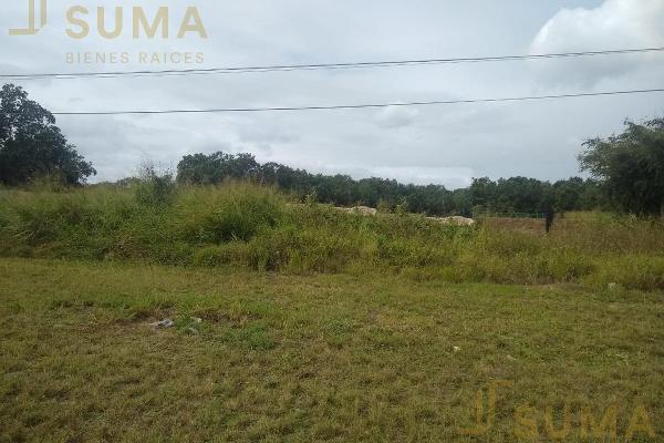 Foto de terreno habitacional en renta en  , puerto industrial de altamira, altamira, tamaulipas, 17635897 No. 02