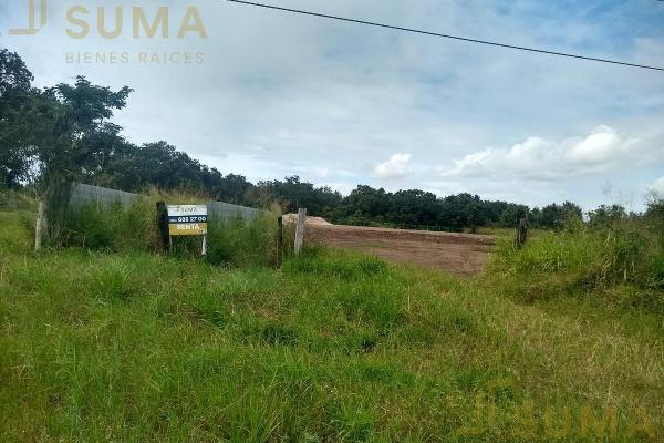 Foto de terreno habitacional en renta en  , puerto industrial de altamira, altamira, tamaulipas, 17635897 No. 03