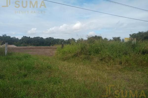 Foto de terreno habitacional en renta en  , puerto industrial de altamira, altamira, tamaulipas, 17635897 No. 04