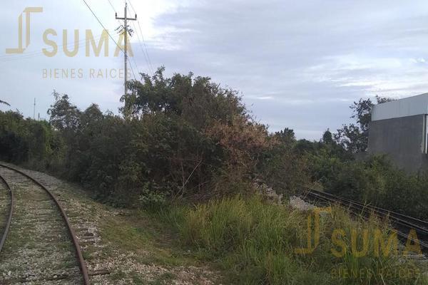 Foto de terreno habitacional en renta en  , puerto industrial de altamira, altamira, tamaulipas, 18509049 No. 03