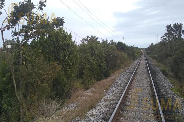Foto de terreno habitacional en renta en  , puerto industrial de altamira, altamira, tamaulipas, 18509049 No. 04