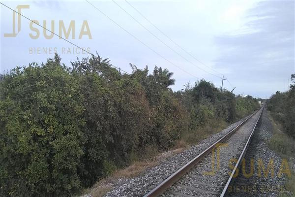 Foto de terreno habitacional en renta en  , puerto industrial de altamira, altamira, tamaulipas, 18509049 No. 06