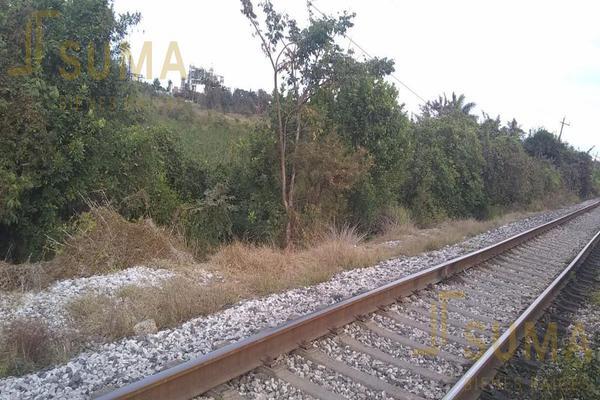 Foto de terreno habitacional en renta en  , puerto industrial de altamira, altamira, tamaulipas, 18509049 No. 07