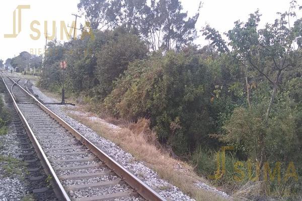 Foto de terreno habitacional en renta en  , puerto industrial de altamira, altamira, tamaulipas, 18509049 No. 08