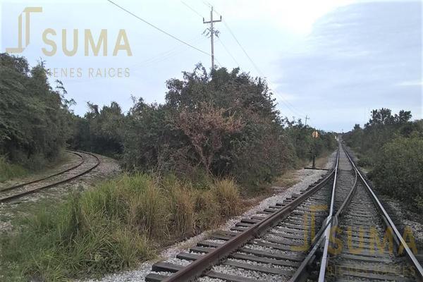 Foto de terreno habitacional en renta en  , puerto industrial de altamira, altamira, tamaulipas, 18509049 No. 09