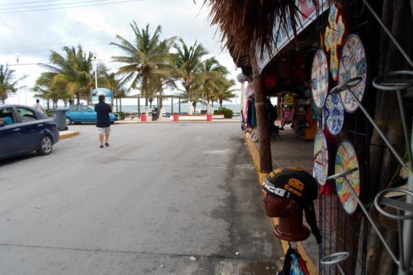 Foto de terreno comercial en venta en  , puerto morelos, benito juárez, quintana roo, 2636925 No. 04