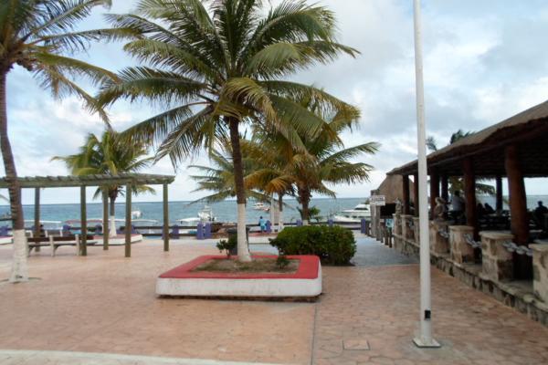 Foto de terreno comercial en venta en  , puerto morelos, benito juárez, quintana roo, 2636925 No. 06